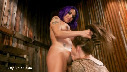 Photo number 14 from TS Foxxy And Kacie Castle's Back-Alley Butt Fuck shot for TS Pussy Hunters on Kink.com. Featuring TS Foxxy and Kacie Castle in hardcore BDSM & Fetish porn.