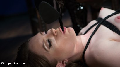 Photo number 12 from Cherry Torn's Dirty-Talking Anal Lesbian Slut shot for Whipped Ass on Kink.com. Featuring Dresden and Cherry Torn in hardcore BDSM & Fetish porn.