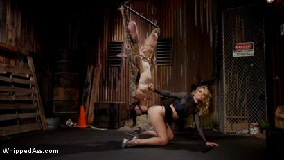 Photo number 9 from The Trash Baby shot for Whipped Ass on Kink.com. Featuring Mona Wales and Rocky Emerson in hardcore BDSM & Fetish porn.