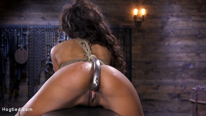Photo number 11 from Brand New Ebony Slut Demi Sutra Gets Tied and Tormented shot for Hogtied on Kink.com. Featuring Demi Sutra in hardcore BDSM & Fetish porn.