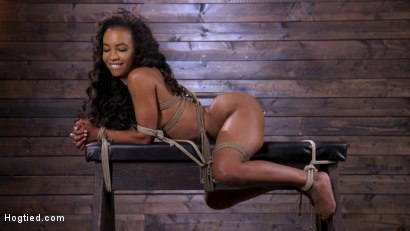 Photo number 14 from Brand New Ebony Slut Demi Sutra Gets Tied and Tormented shot for Hogtied on Kink.com. Featuring Demi Sutra in hardcore BDSM & Fetish porn.