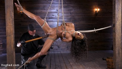 Photo number 4 from Brand New Ebony Slut Demi Sutra Gets Tied and Tormented shot for Hogtied on Kink.com. Featuring Demi Sutra in hardcore BDSM & Fetish porn.