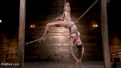 Photo number 6 from Tall Tattooed Slut in Grueling Bondage is Blissfully Suffering shot for Hogtied on Kink.com. Featuring Rocky Emerson in hardcore BDSM & Fetish porn.
