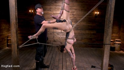 Photo number 7 from Tall Tattooed Slut in Grueling Bondage is Blissfully Suffering shot for Hogtied on Kink.com. Featuring Rocky Emerson in hardcore BDSM & Fetish porn.