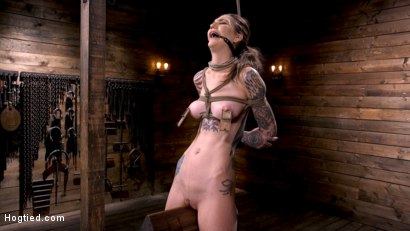 Photo number 10 from Tall Tattooed Slut in Grueling Bondage is Blissfully Suffering shot for Hogtied on Kink.com. Featuring Rocky Emerson in hardcore BDSM & Fetish porn.