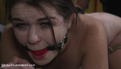 Photo number 10 from The Sneaky Slut shot for Sex And Submission on Kink.com. Featuring Tommy Pistol and Anastasia Rose in hardcore BDSM & Fetish porn.