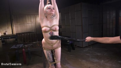 Photo number 4 from Blonde Slut Arielle Aquinas Ass Fucked and Abused like a Punching Bag shot for Brutal Sessions on Kink.com. Featuring Arielle Aquinas and Tommy Pistol in hardcore BDSM & Fetish porn.