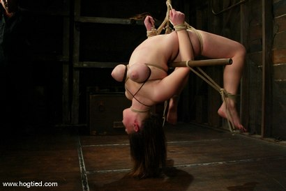 Photo number 7 from Sara Scott shot for Hogtied on Kink.com. Featuring Sara Scott in hardcore BDSM & Fetish porn.