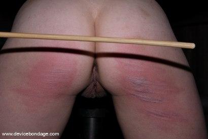 Photo number 14 from Bruised Fruit shot for Device Bondage on Kink.com. Featuring Sara Scott in hardcore BDSM & Fetish porn.