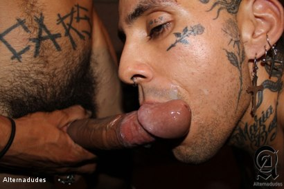 Photo number 8 from Tatted Punk Sucks a Monster Cock shot for Alternadudes on Kink.com. Featuring Lucy and Rave in hardcore BDSM & Fetish porn.