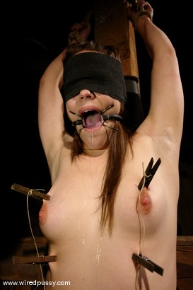 Photo number 12 from Bobbi Starr shot for Wired Pussy on Kink.com. Featuring Bobbi Starr in hardcore BDSM & Fetish porn.