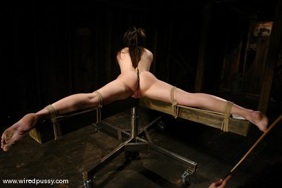 Photo number 9 from Bobbi Starr shot for Wired Pussy on Kink.com. Featuring Bobbi Starr in hardcore BDSM & Fetish porn.