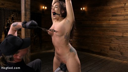 Photo number 5 from Curvy Slut Gabriella Paltrova in Grueling Rope Bondage and Tormented shot for Hogtied on Kink.com. Featuring Gabriella Paltrova in hardcore BDSM & Fetish porn.