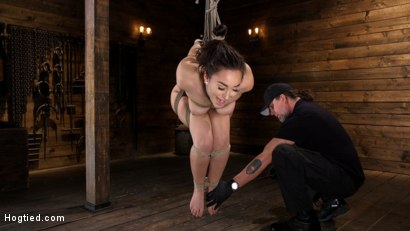 Photo number 6 from Curvy Slut Gabriella Paltrova in Grueling Rope Bondage and Tormented shot for Hogtied on Kink.com. Featuring Gabriella Paltrova in hardcore BDSM & Fetish porn.