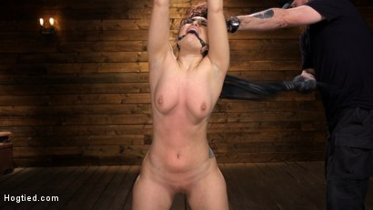Photo number 4 from Curvy Slut Gabriella Paltrova in Grueling Rope Bondage and Tormented shot for Hogtied on Kink.com. Featuring Gabriella Paltrova in hardcore BDSM & Fetish porn.