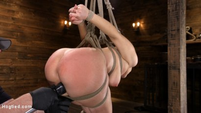 Photo number 9 from Curvy Slut Gabriella Paltrova in Grueling Rope Bondage and Tormented shot for Hogtied on Kink.com. Featuring Gabriella Paltrova in hardcore BDSM & Fetish porn.