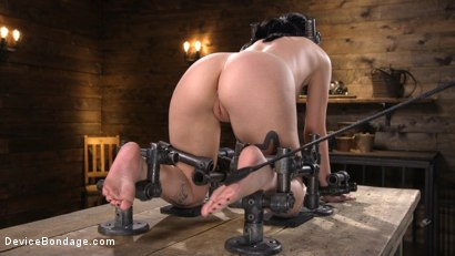 Photo number 5 from Charlotte Sartre Bound In Pipe And Chains shot for Device Bondage on Kink.com. Featuring Charlotte Sartre in hardcore BDSM & Fetish porn.