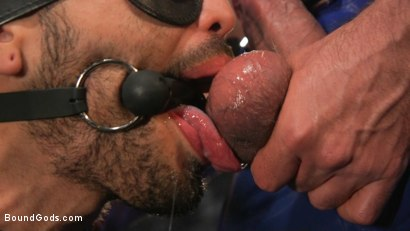 Photo number 6 from Angel Duran Broken In and Stretched Out shot for Bound Gods on Kink.com. Featuring Dominic Pacifico and Angel Duran in hardcore BDSM & Fetish porn.