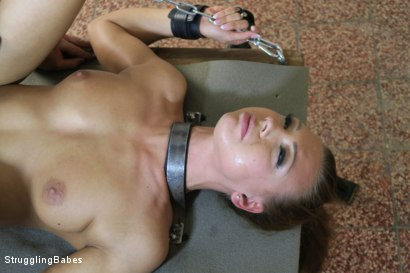 Photo number 14 from Morgan Stuck in a Torment Device shot for Struggling Babes on Kink.com. Featuring Morgan Rodriguez and Ridge in hardcore BDSM & Fetish porn.