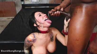 Photo number 8 from Buxom slut Lily Lane takes all the cock and gets all the cum shot for Bound Gang Bangs on Kink.com. Featuring Donny Sins, Mark Zane, Lily Lane, Apollo Knight , Johnny Goodluck  and Rob Piper in hardcore BDSM & Fetish porn.