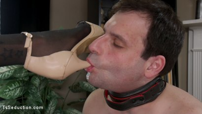 Photo number 1 from A Morning With Jessica Fox: Slave Marcelo Serves A Goddess shot for TS Seduction on Kink.com. Featuring Jessica Fox and Marcelo in hardcore BDSM & Fetish porn.