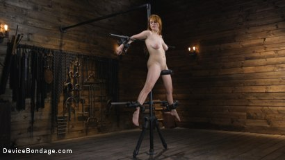 Photo number 1 from Pretty Please, Penny Pax shot for Device Bondage on Kink.com. Featuring Penny Pax in hardcore BDSM & Fetish porn.