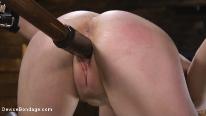 Photo number 11 from Pretty Please, Penny Pax shot for Device Bondage on Kink.com. Featuring Penny Pax in hardcore BDSM & Fetish porn.