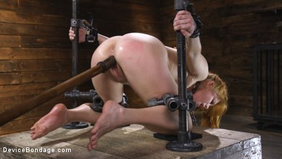 Photo number 12 from Pretty Please, Penny Pax shot for Device Bondage on Kink.com. Featuring Penny Pax in hardcore BDSM & Fetish porn.