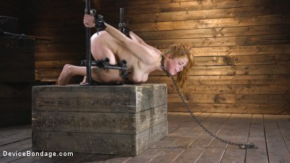 Photo number 15 from Pretty Please, Penny Pax shot for Device Bondage on Kink.com. Featuring Penny Pax in hardcore BDSM & Fetish porn.