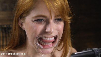 Photo number 3 from Pretty Please, Penny Pax shot for Device Bondage on Kink.com. Featuring Penny Pax in hardcore BDSM & Fetish porn.
