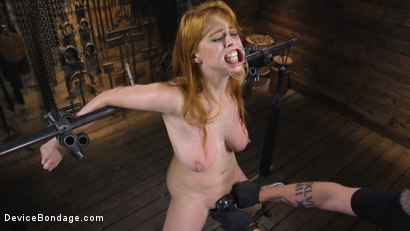 Photo number 6 from Pretty Please, Penny Pax shot for Device Bondage on Kink.com. Featuring Penny Pax in hardcore BDSM & Fetish porn.