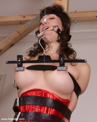 Photo number 8 from Serena shot for Hogtied on Kink.com. Featuring Serena in hardcore BDSM & Fetish porn.