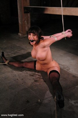 Photo number 3 from Ava Devine shot for Hogtied on Kink.com. Featuring Ava Devine in hardcore BDSM & Fetish porn.