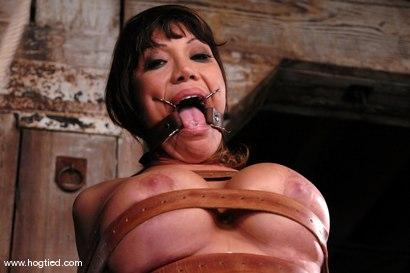 Photo number 8 from Ava Devine shot for Hogtied on Kink.com. Featuring Ava Devine in hardcore BDSM & Fetish porn.