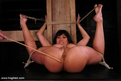 Photo number 13 from Ava Devine shot for Hogtied on Kink.com. Featuring Ava Devine in hardcore BDSM & Fetish porn.