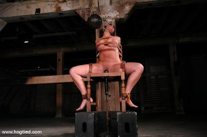 Photo number 9 from Ava Devine shot for Hogtied on Kink.com. Featuring Ava Devine in hardcore BDSM & Fetish porn.