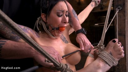 Photo number 1 from Tattooed Slut Brutalized in Bondage and has Squirting Orgasms shot for Hogtied on Kink.com. Featuring Lily Lane in hardcore BDSM & Fetish porn.