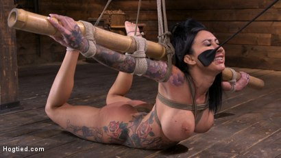 Photo number 9 from Tattooed Slut Brutalized in Bondage and has Squirting Orgasms shot for Hogtied on Kink.com. Featuring Lily Lane in hardcore BDSM & Fetish porn.