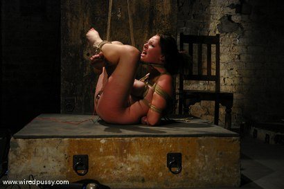 Photo number 6 from Sara Scott shot for Wired Pussy on Kink.com. Featuring Sara Scott in hardcore BDSM & Fetish porn.