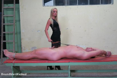 Photo number 8 from Victoria Pure has a Toyboy to Play with  shot for Bound Men Wanked on Kink.com. Featuring Victoria Pure and Alex in hardcore BDSM & Fetish porn.