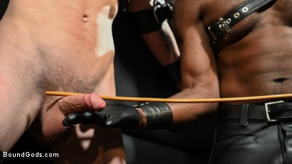 Photo number 2 from OBEDIENCE TRAINING Devin Trez Disciplines New Dog with Intense Bondage shot for Bound Gods on Kink.com. Featuring Tony Orlando and Devin Trez in hardcore BDSM & Fetish porn.