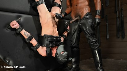 Photo number 6 from OBEDIENCE TRAINING Devin Trez Disciplines New Dog with Intense Bondage shot for Bound Gods on Kink.com. Featuring Tony Orlando and Devin Trez in hardcore BDSM & Fetish porn.