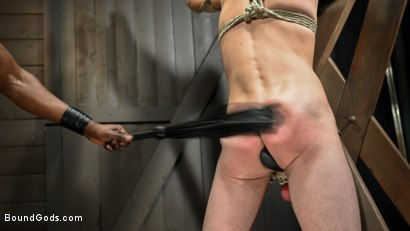 Photo number 8 from OBEDIENCE TRAINING Devin Trez Disciplines New Dog with Intense Bondage shot for Bound Gods on Kink.com. Featuring Tony Orlando and Devin Trez in hardcore BDSM & Fetish porn.