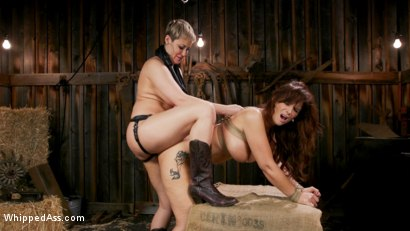 Photo number 11 from Kinky Lesbian Barn Babes shot for Whipped Ass on Kink.com. Featuring Ryan Keely and Syren de Mer in hardcore BDSM & Fetish porn.