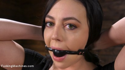 Photo number 2 from Fresh Meat: Whitney Wright Is Bound And Fucked shot for Fucking Machines on Kink.com. Featuring Whitney Wright in hardcore BDSM & Fetish porn.