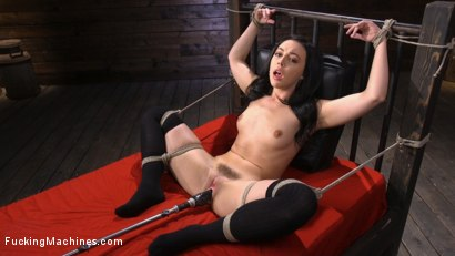 Fresh Meat: Whitney Wright Is Bound And Fucked