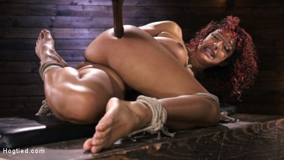 Photo number 1 from Brutal Bondage, Severe Torment, And Squirting Orgasms shot for Hogtied on Kink.com. Featuring Daisy Ducati in hardcore BDSM & Fetish porn.