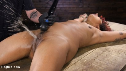 Photo number 14 from Brutal Bondage, Severe Torment, And Squirting Orgasms shot for Hogtied on Kink.com. Featuring Daisy Ducati in hardcore BDSM & Fetish porn.