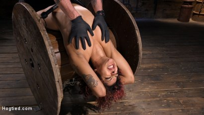 Photo number 6 from Brutal Bondage, Severe Torment, And Squirting Orgasms shot for Hogtied on Kink.com. Featuring Daisy Ducati in hardcore BDSM & Fetish porn.
