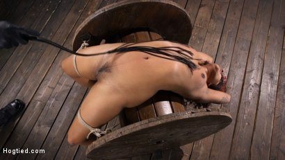 Photo number 7 from Brutal Bondage, Severe Torment, And Squirting Orgasms shot for Hogtied on Kink.com. Featuring Daisy Ducati in hardcore BDSM & Fetish porn.